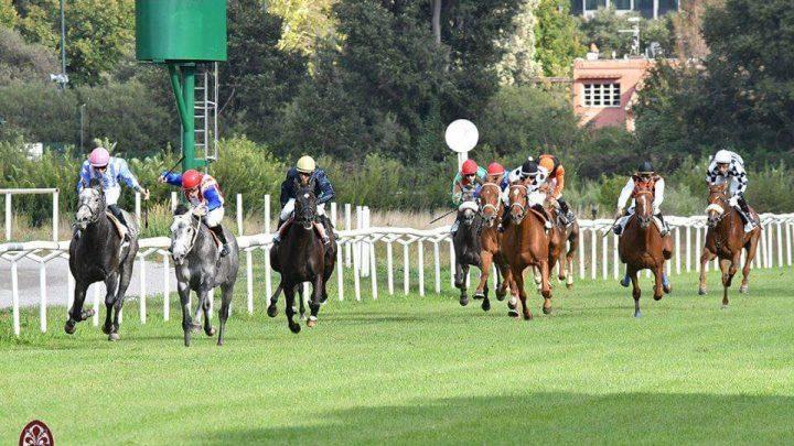 Anglo Arabi impegnati a Firenze, vince Yoghi da Clodia davanti a Uolcher e Vangkook