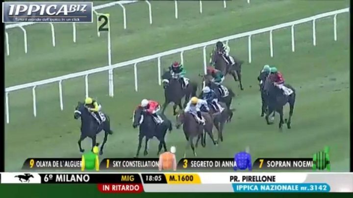 Olaya De L'Alguer trionfa a Milano per la scuderia San Giuliano