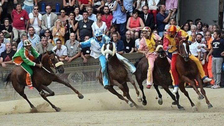 Palio di Siena: i 10 cavalli, 9 sono allevati in Sardegna.