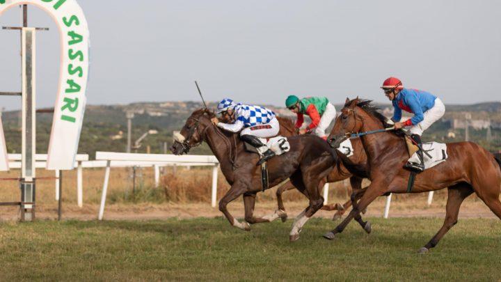 1° in carriera per il PSA Puy Raynal, per i colori dello sceicco Al Nujaifi.