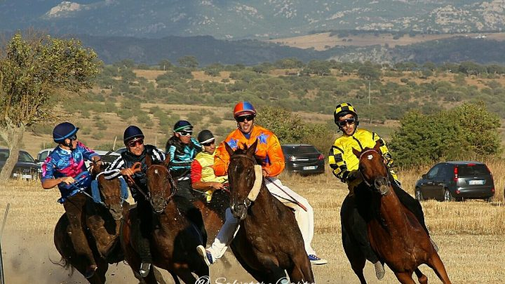 Palio di Tula: Sabato 03 Agosto la corsa degli A.A divisi per Fondo. 9500 € il montepremi.
