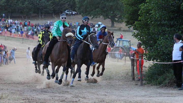 Sa Itria: i primi nomi dei cavalli partecipanti.