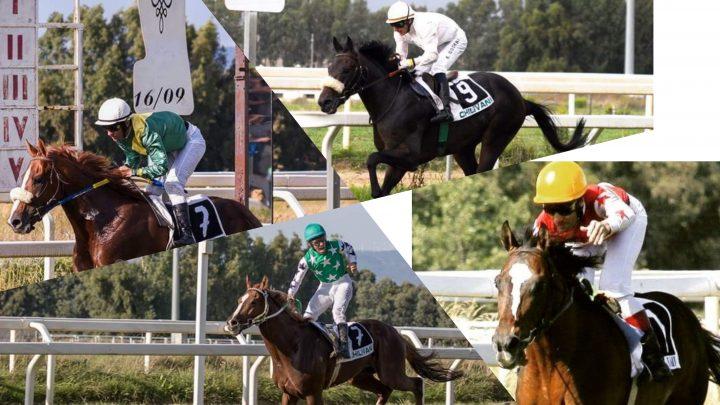 I Derby dal 2008 al  2018, la storia dei cavalli vittoriosi.