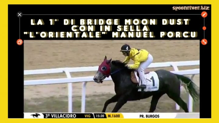 Clip|dalla Corea a Villacidro Manuel Porcu trionfa con Bridge Moon Dust, highlights e interviste