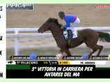 Clip| il PSA  Antares del Ma fa 3 in carriera, highlights e interviste