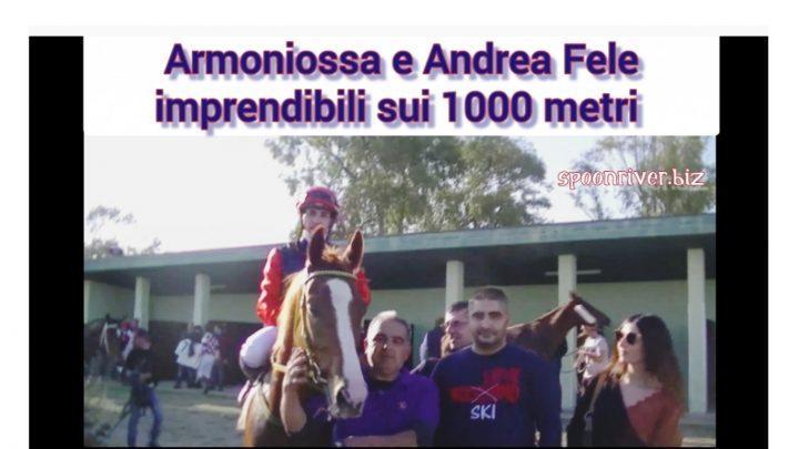 Clip  Armoniossa vince la 2° corsa in carriera, highlights e interviste.