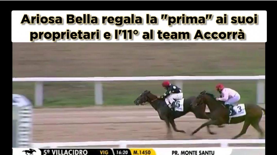 """Clip Ariosa Bella regala la """"prima"""" ai suoi proprietari, highlights e interviste"""
