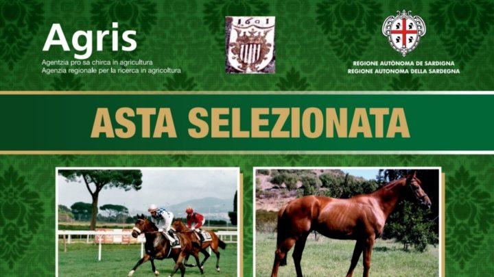 Agris: appuntamento con le aste selezionate il 25 Gennaio 2020